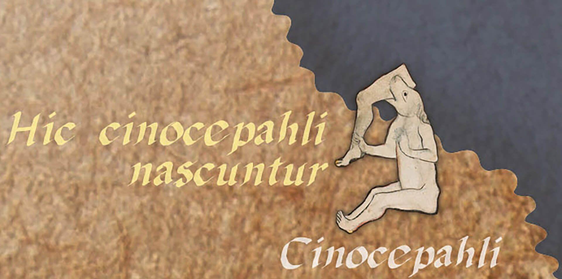 cinocéfalo orbis romanum