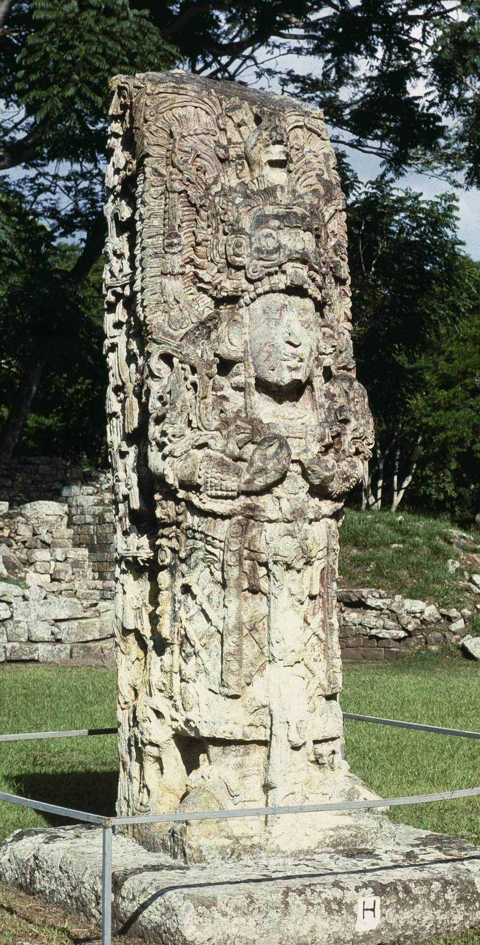 viaje arqueológico al mundo maya Copán