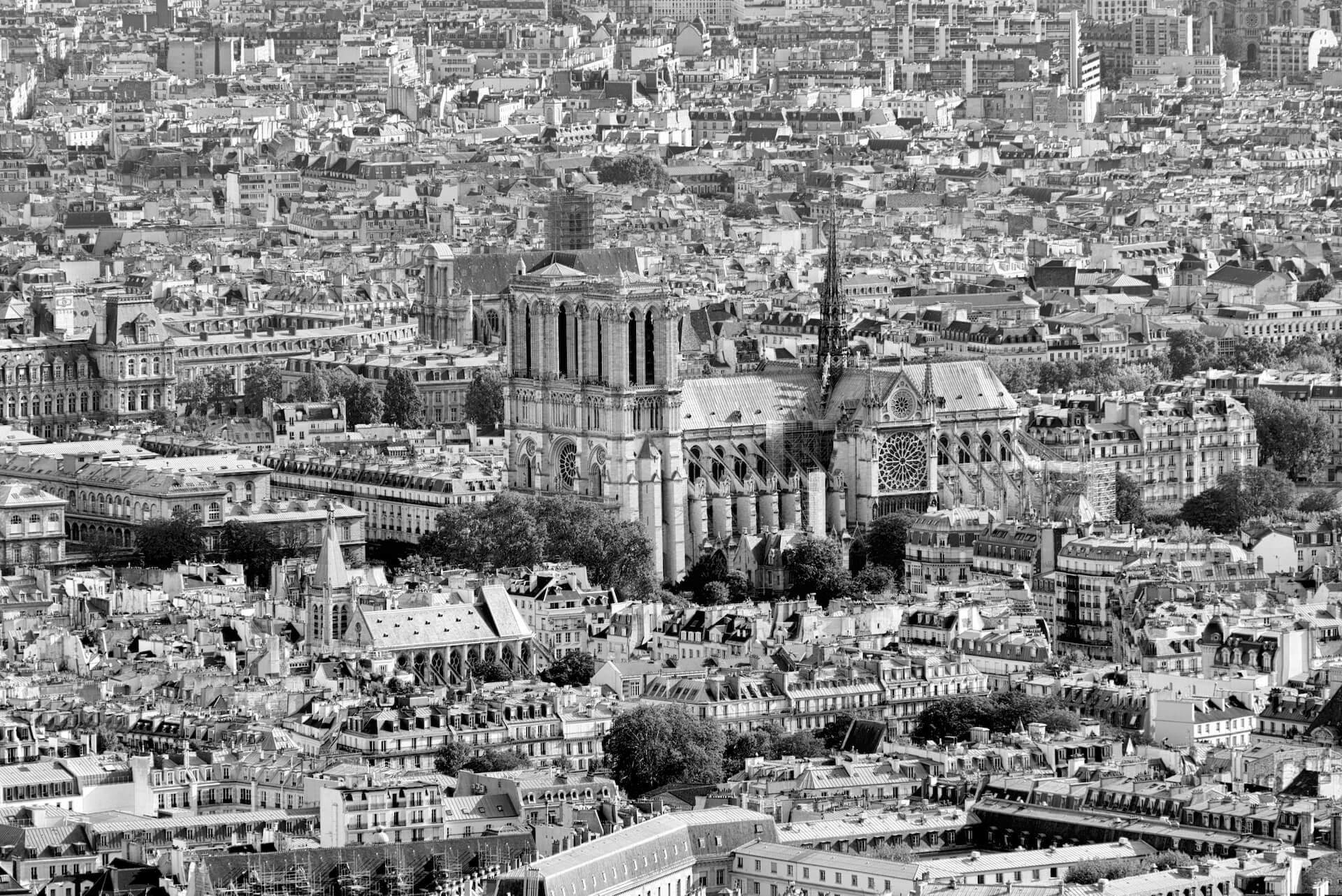 destrucciones de Notre-Dame