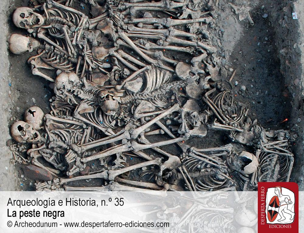 Sepulturas y cementerios. La arqueología de la peste negra por Dominique Castex y Sacha Kacki (Université Bordeaux)