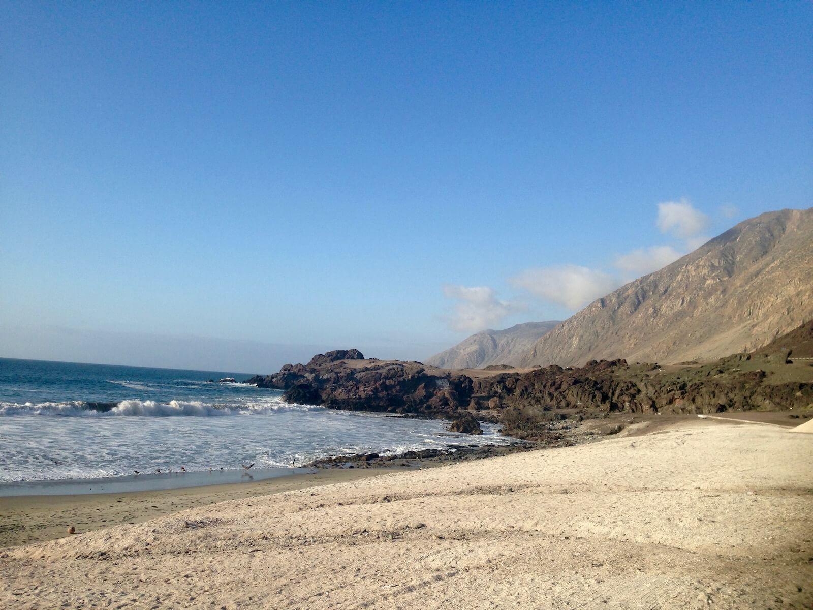 arqueobotánica costa desierto de Atacama ARVCODA